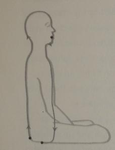 The Yin Yang Circulation