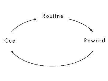 Habit loop picture
