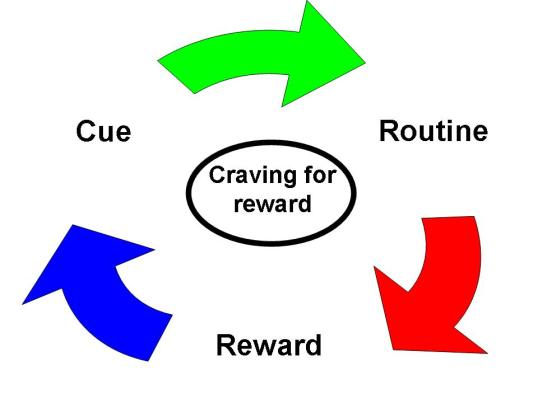 The Habit Loop and Craving