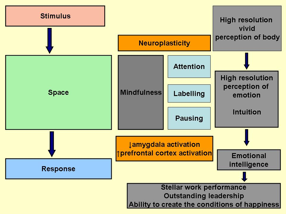 definition of emotional intelligence and how it can help us prosper in life Emotional intelligence-daniel goleman [pdftsuff blogspot  emotional intelligence-daniel goleman [pdftsuff  emotional intelligence can help.
