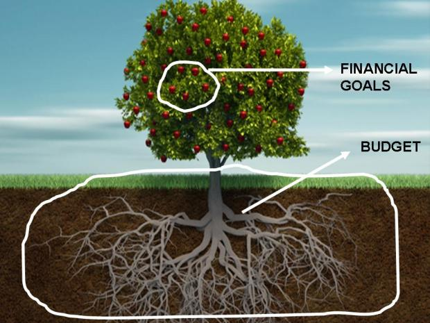 Budget, financial goals and the tree